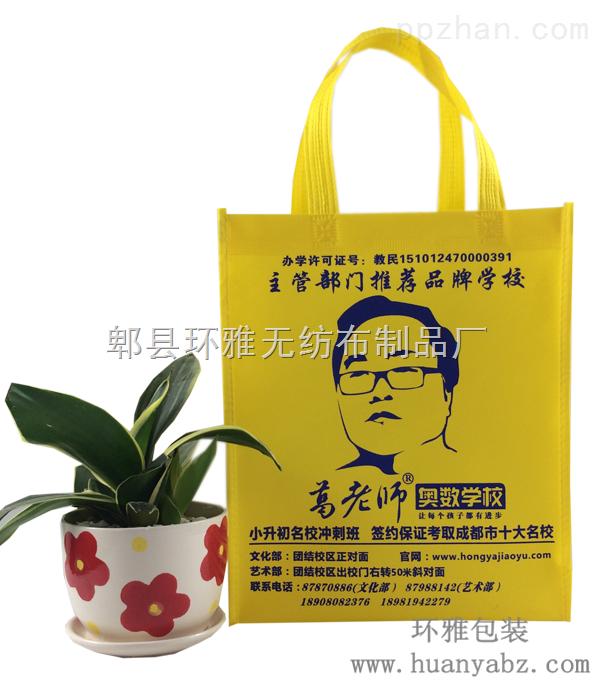 环雅包装无纺布学校宣传袋定做可印logo美观耐用